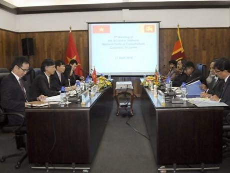 Vietnam-Srilanka : 3e consultation politique - ảnh 1