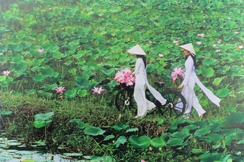 Activités en l'honneur du 128e anniversaire du président Hô Chi Minh - ảnh 2