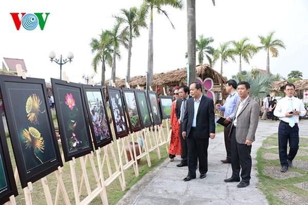 Activités en l'honneur du 128e anniversaire du président Hô Chi Minh - ảnh 1