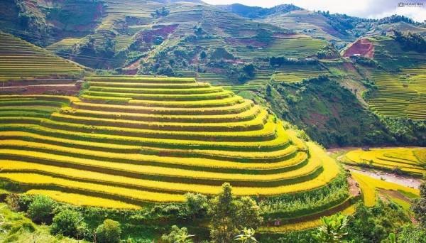 À la découverte des rizières en terrasse de Mù Cang Chai - ảnh 2