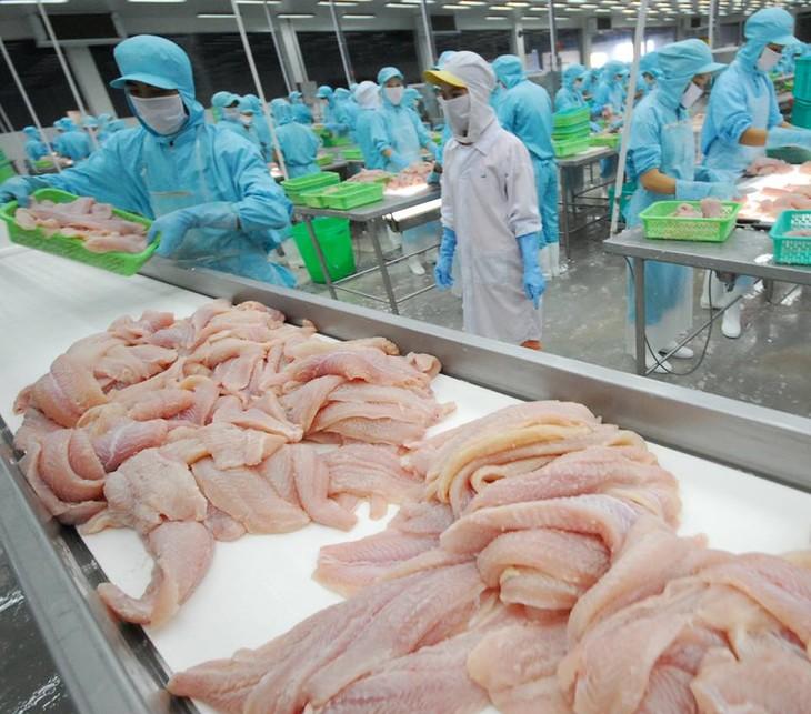 Vietnam: vers le développement durable de la pêche - ảnh 1