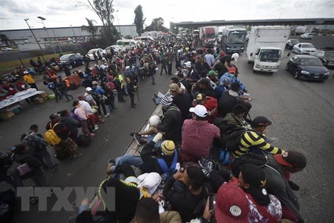 Maroc : Ouverture du 11e Forum mondial sur la migration  - ảnh 1