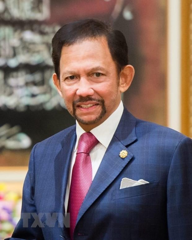 Le Vietnam et Brunei renforcent leurs liens - ảnh 1