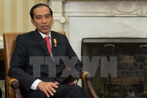 Indonésie: Joko Widodo donné gagnant de l'élection présidentielle  - ảnh 1