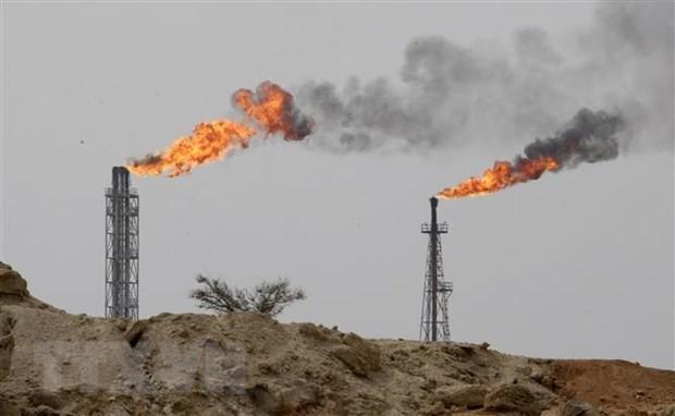 L'Iran ne croit pas à l'interdiction totale des exportations de pétrole iranien  - ảnh 1