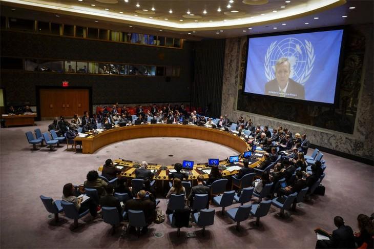 Le Vietnam, membre non permanent du Conseil de sécurité de l'ONU - ảnh 1