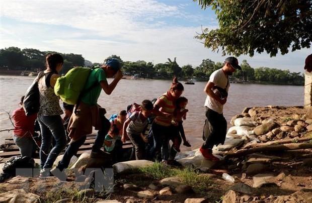 Crise migratoire: le Congrès américain débloque 4,6 milliards de dollars - ảnh 1