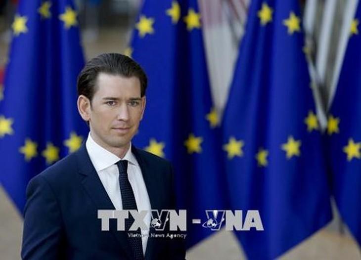 Autriche: Élections législatives fixées au 29 septembre - ảnh 1