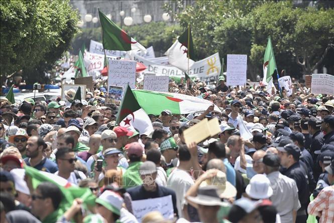 Une foule de manifestants dans les rues d'Alger pour le 20e vendredi de contestation - ảnh 1