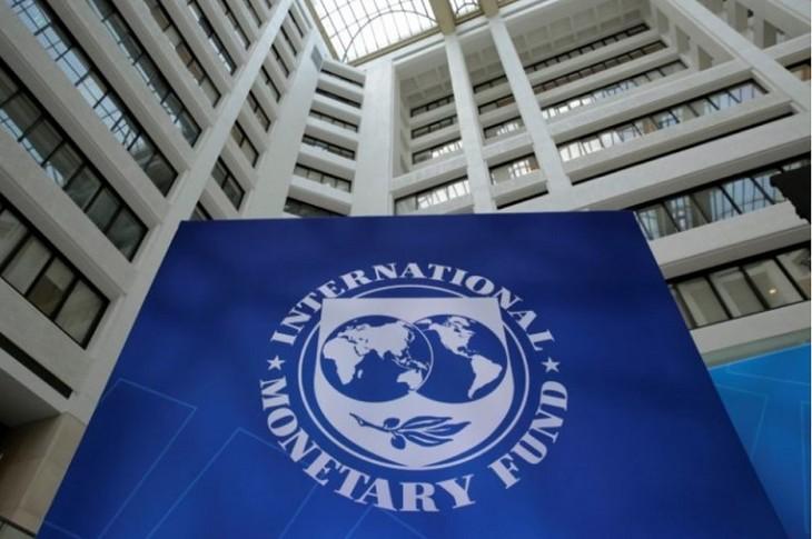 FMI: la croissance mondiale révisée à la baisse - ảnh 1