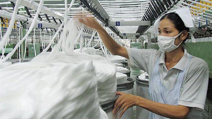 Хлопковый день «Cotton Day» впервые проходил во Вьетнаме - ảnh 1