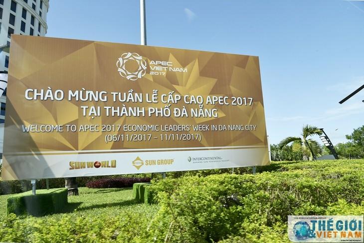 Зарубежные эксперты высоко оценивают роль Вьетнама в качестве страны-хозяйки АТЭС 2017 - ảnh 1
