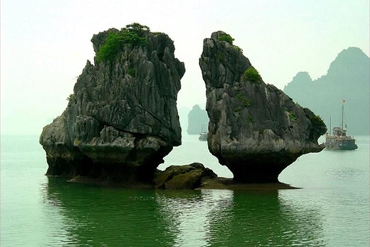 В школах провинции Куангнинь началось преподавание предмета «Ценности залива Халонг» - ảnh 1