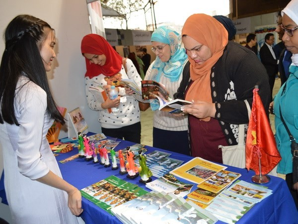 Вьетнам принял участие в культурном фестивале Шакиа в Египте - ảnh 1