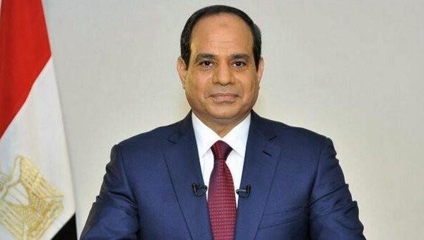 Египет подтвердил, что продолжит прилагать усилия для прекращения сирийского кризиса - ảnh 1