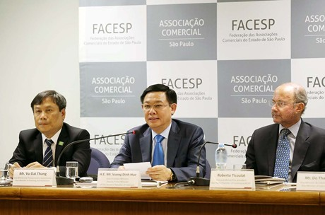 В Бразилии с официальным визитом находился вице-премьер Вьетнама Выонг Динь Хюэ - ảnh 1