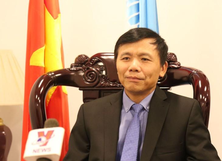 Посол Данг Динь Кюй: Вьетнам является активным и ответственным членом ООН - ảnh 1