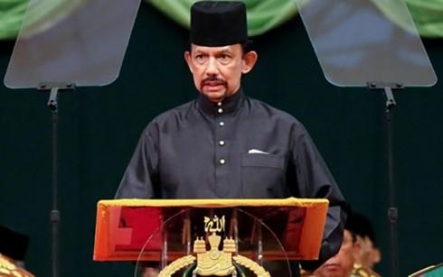 Во Вьетнаме с государственным визитом находится Султан Брунея - ảnh 1