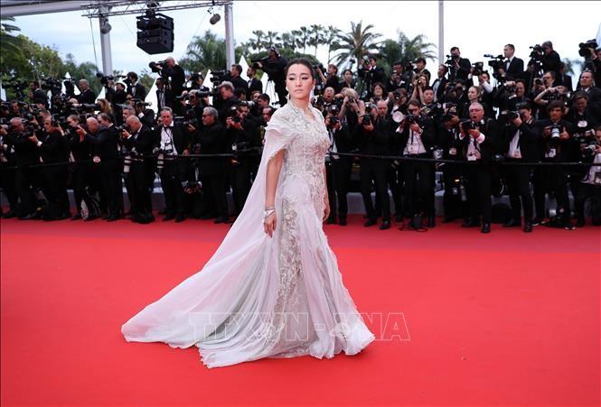 Каннский кинофестиваль 2019: Вьетнам представляет две картины - ảnh 1