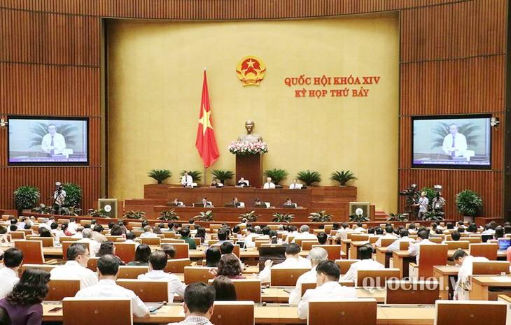 Не допустить, чтобы Вьетнам стал транзитным пунктом для торговцев наркотиками  - ảnh 1