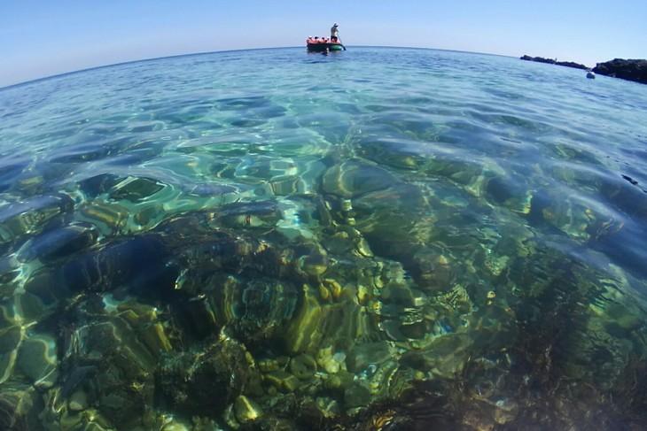 В городе Дананге стартовала Неделя моря и островов Вьетнама - ảnh 1