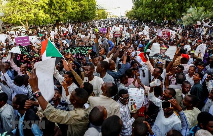 СБ ООН призвал заинтересованные стороны в Судане прекратить насилие - ảnh 1