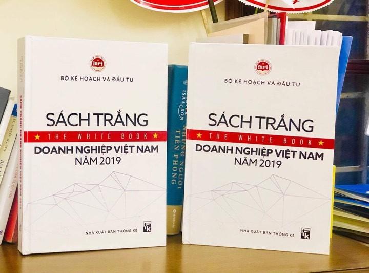 В свет впервые выпущена Белая книга о вьетнамском бизнесе 2019 года - ảnh 1