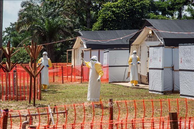 ВОЗ назвала эпидемию Эболы в ДР Конго проблемой международного масштаба - ảnh 1