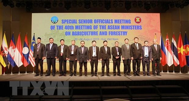 В городе Хюэ прошла специальная конференция AMAF ASEAN+3 - ảnh 1