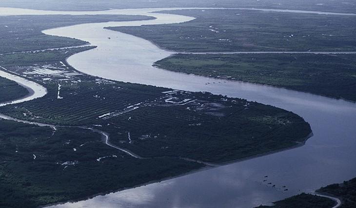 베트남, 메콩강 유역의 지속 가능한 발전 촉진 - ảnh 2