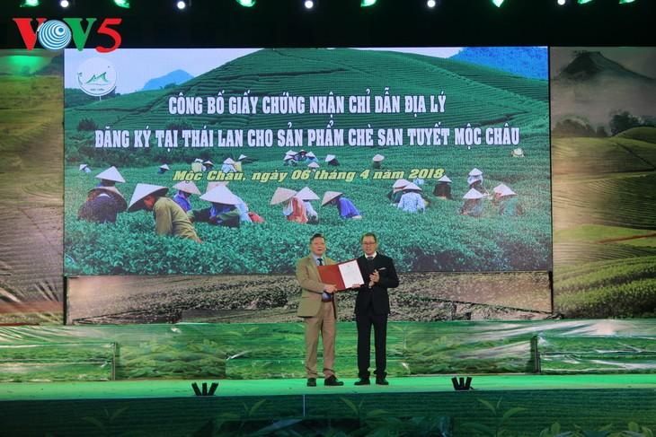 제3차 Moc Chau고원차 대회 개막 - ảnh 2