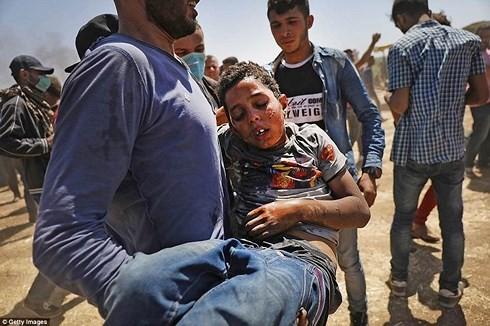 가자지구에서 이팔분쟁 심화하는 상황에 대한 베트남의 반응 - ảnh 1