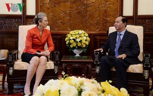 쩐다이꽝 국가주석,  영국 대사 및 네덜란드 대사 접견 - ảnh 2