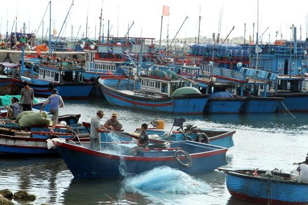 응웬쑤안푹 베트남 국무총리: 베트남은 지속 가능한 발전과 공동 번영을 위해 모든 국가 및 상대국과의 협력을 강화할 준비가 되어 있다. - ảnh 1