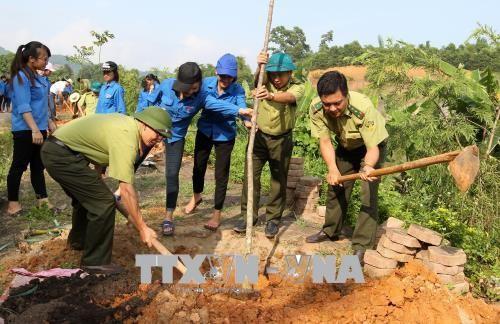 베트남, 세계 사막화 방지의 날에 적극 참여 - ảnh 1