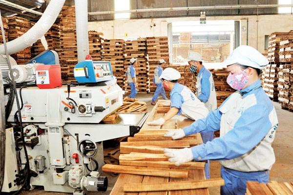 베트남 임업 90 억불 수출 목표 달성 가속화 - ảnh 1