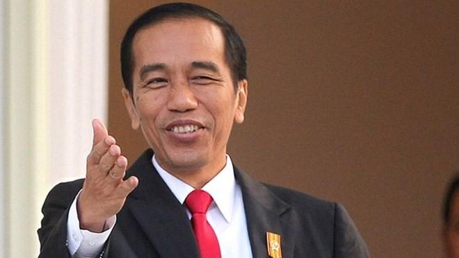 인도네시아 대통령 및 부인, 베트남 국빈 방문 - ảnh 1