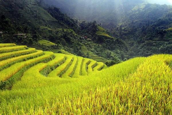 베트남 하짜잉의 아름다움을 탐구하자! - ảnh 3