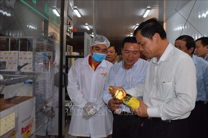 베트남, 가이양의 잠재력 시장 - ảnh 1