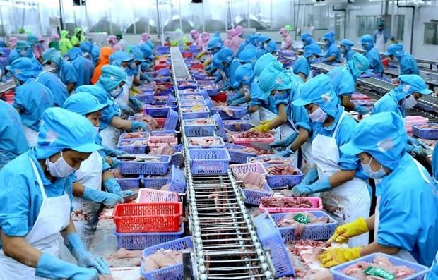 베트남 해산물, CPTPP로부터의 이익 창출 노력 - ảnh 1