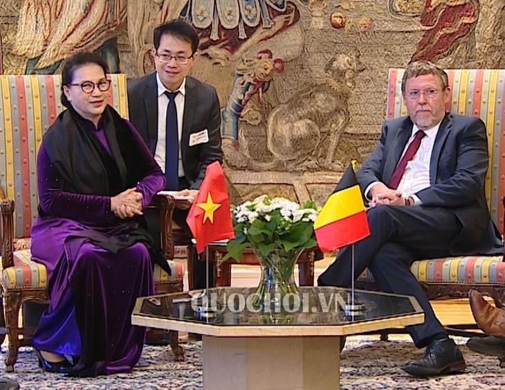 베트남 국회의장, 벨기에 하원의장과 접견, 국제무역위원회 위원장과 회의 - ảnh 1