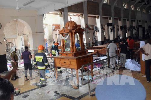 IS, 스리랑카 폭발 테러에 대한 주범 자처 - ảnh 1