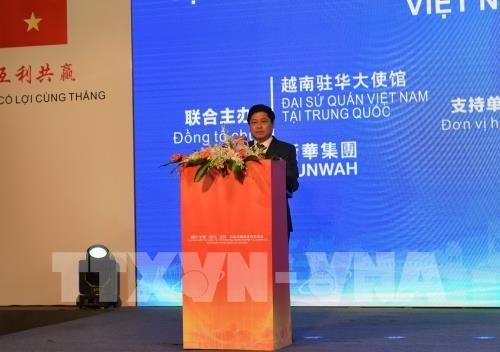 Đẩy mạnh hợp tác kinh tế, thương mại, nông nghiệp và logistics Việt Nam-Trung Quốc - ảnh 1