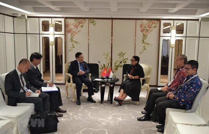 Việt Nam - Indonesia tiếp tục xúc tiến đàm phán phân định vùng đặc quyền kinh tế - ảnh 1