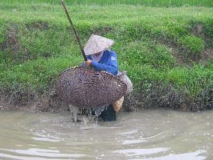 Perkenalan tentang alat-alat penangkap ikan tradisional Vietnam - ảnh 2