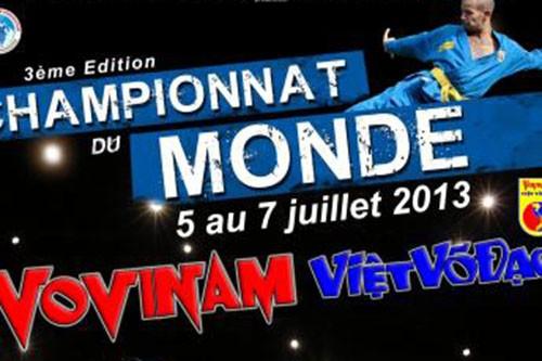Vietnam mencapai juara  umum  turnemen silat Vovinam Dunia ke-3. - ảnh 1