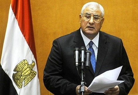 Presiden Sementara Mesir menyerukan kerujukan - ảnh 1