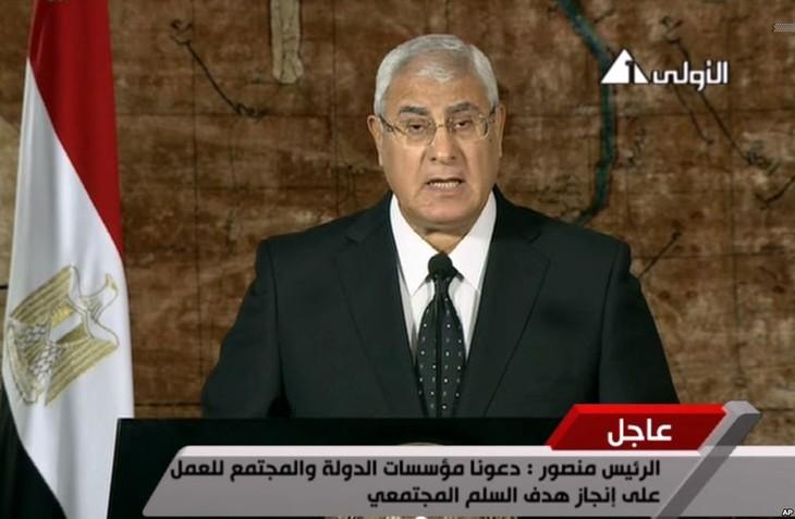 Presiden Sementara Mesir memberikan hak penanganan  darurat kepada PM - ảnh 1
