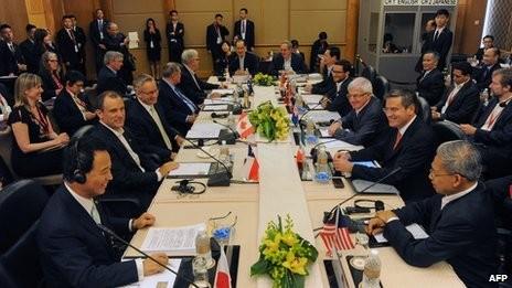 Perundingan TPP belum mencapai perkembangan - ảnh 1