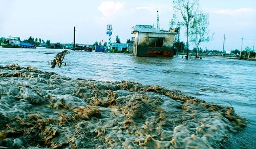 ВБ оказывает Вьетнаму помощь в реформировании электроэнергетики и борьбе с изменением климата - ảnh 1